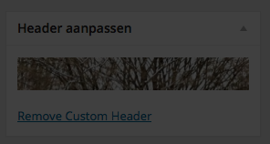 Set as Custom Header aangeklikt