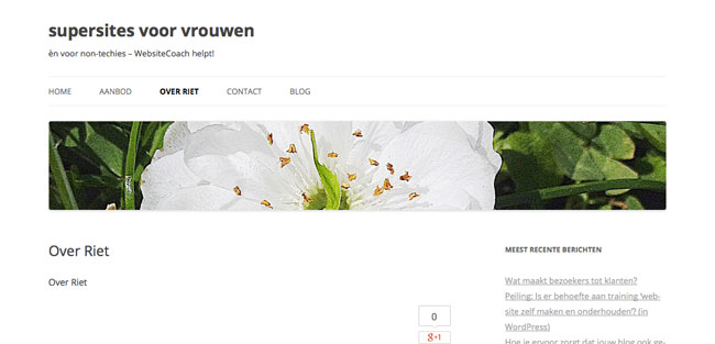 Header bij pagina Over Riet